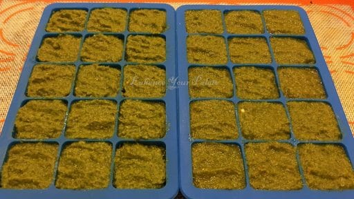 Freezer cube trays filled with freshly prepared thai green curry paste