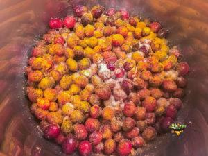Cranberry-Ginger Chutney Step
