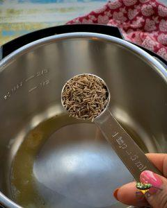 Cumin seeds being added to IP