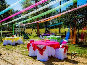 Holi Party Decorations
